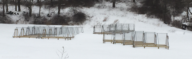 chicken tractors in winter
